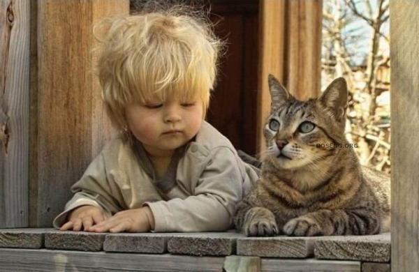 Як формувати у дітей культуру поводження з тваринами
